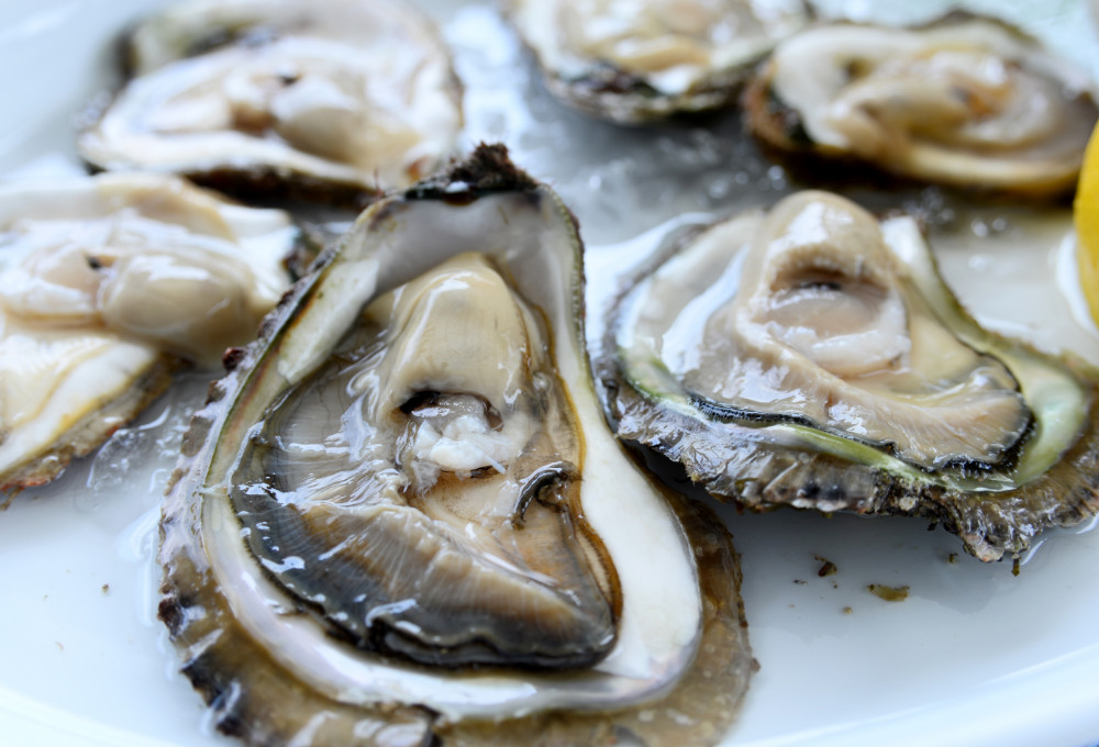 Delicacies of the Sea